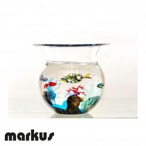 Glass bowl aquarium medium size
